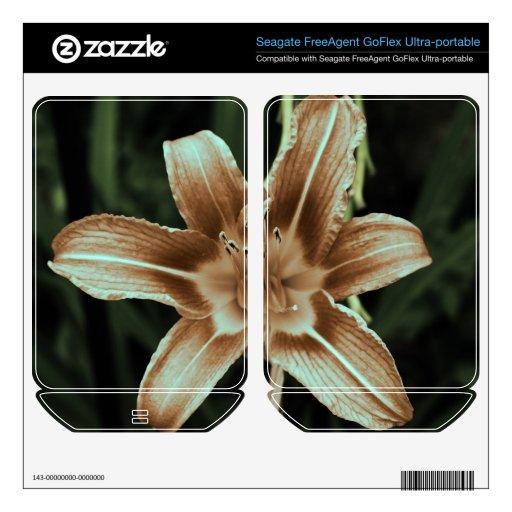 flores FreeAgent GoFlex calcomanía