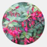 Flores fucsias en rojo púrpura pegatina redonda