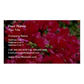 Flores fucsias rojos, selva tropical del EL Yunque Tarjeta Personal