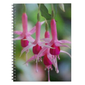Flores fucsias rosadas bonitas cuaderno