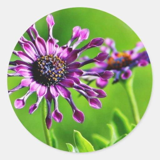 Flores hacia fuera en mi pórtico pegatinas redondas