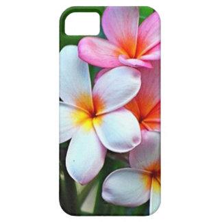 Flores hawaianas del Plumeria iPhone 5 Fundas