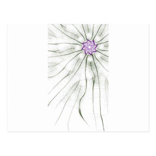 flores herbosas tarjetas postales
