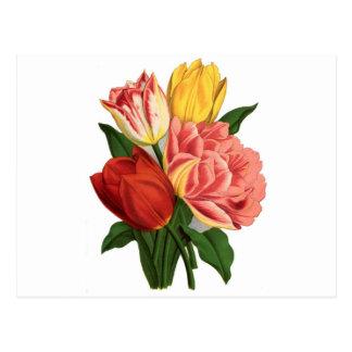 flores hermosas de las vides del vintage de los tarjeta postal