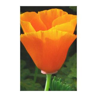 Flores hermosas del amarillo anaranjado impresiones en lona