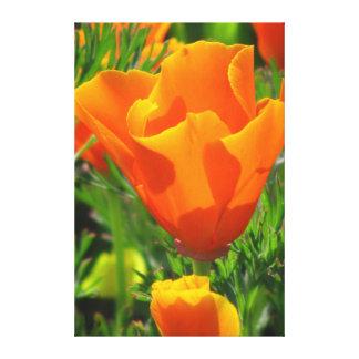 Flores hermosas del amarillo anaranjado impresiones de lienzo