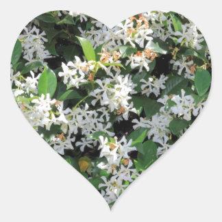 Flores hermosas del jazmín pegatina corazón personalizadas
