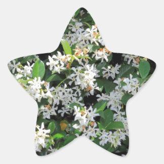Flores hermosas del jazmín pegatinas