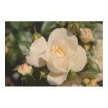 Flores hermosas del rosa blanco. Foto floral Art. Cuadros De Madera