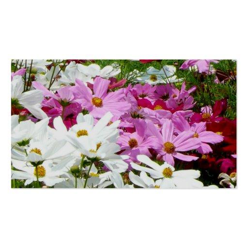 Flores hermosas del verano tarjetas de visita