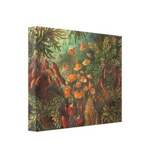 Flores hermosas del vintage impresión en lona estirada