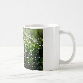Flores hermosas en el mundo 03 taza de café