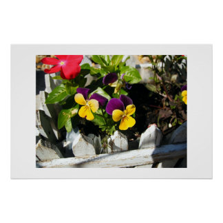 Flores hermosas poster