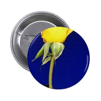 flores híbridas amarillas del metal del oro del ro pin