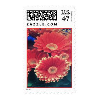 Flores inclinadas blanco sello