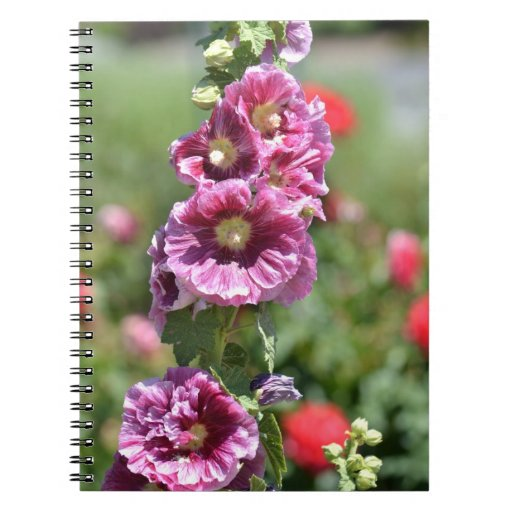 Flores inspiradas del Hollyhock Libro De Apuntes Con Espiral