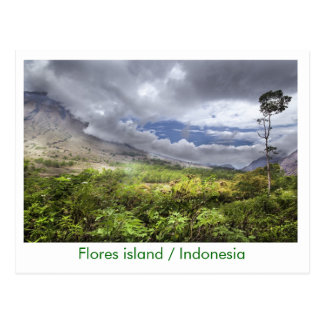 Flores island / Indonesia Postcard