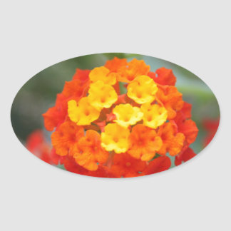 Flores italianas calcomania de oval