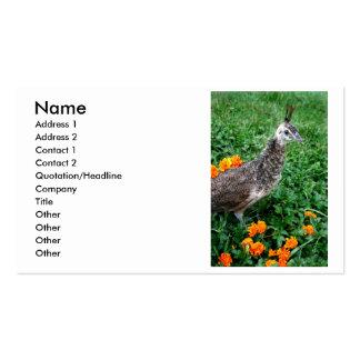 Flores jovenes del naranja de la hierba verde del  tarjetas de visita