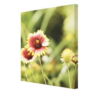 Flores Impresiones De Lienzo
