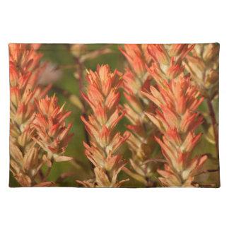 Flores llameantes mantel individual