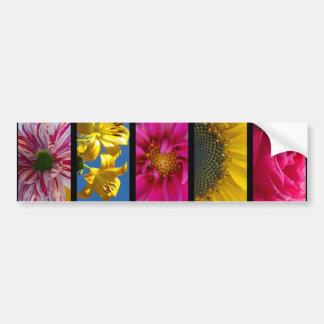 Flores macras rosadas y amarillas de la pegatina p pegatina para auto