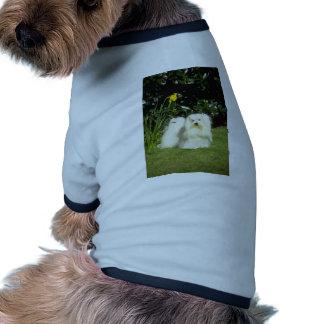 flores maltesas amarillas del terrier camisas de perritos
