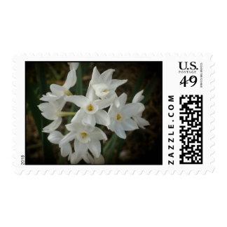 Flores melancólicas sellos