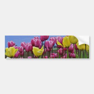 Flores mezcladas de los tulipanes rosados y amaril pegatina de parachoque
