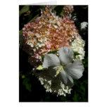 Flores mezcladas en blanco Card-1 Tarjeta