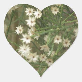 Flores miniatura del desierto pegatina corazón