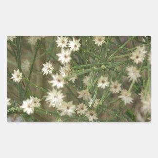 Flores miniatura del desierto rectangular altavoz