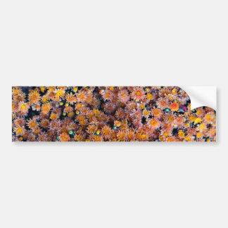 Flores minúsculas (regalo) pegatina para auto
