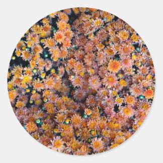 Flores minúsculas (regalo) pegatina redonda