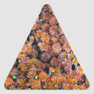 Flores minúsculas (regalo) pegatina triangular
