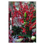 flores, navidad, invierno, pizarras blancas de calidad