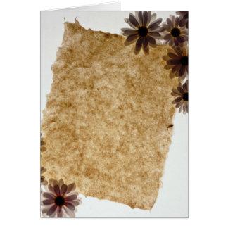 Flores negras del papel y de las margaritas tarjetón