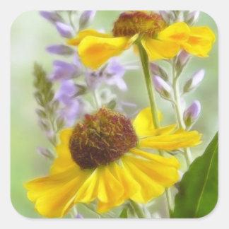 Flores pintadas del Helenium Pegatina Cuadrada
