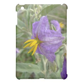 Flores plata-con hojas púrpuras del nightshade