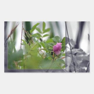 Flores por el lago - rosa rectangular altavoces