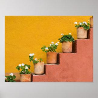 Flores Potted en escalera Póster