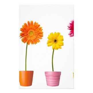 Flores Potted Papelería