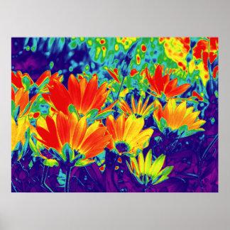 Flores psicodélicas póster