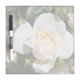 flores puras bonitas del rosa blanco. botánico tablero blanco