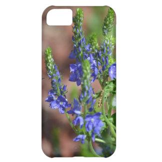 flores Púrpura-azules con la abeja