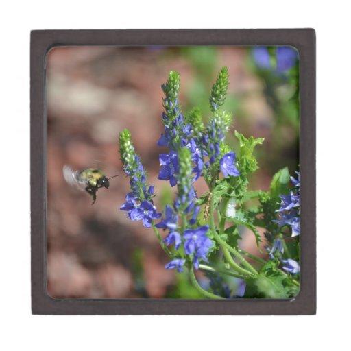 flores Púrpura-azules con la abeja Caja De Joyas De Calidad