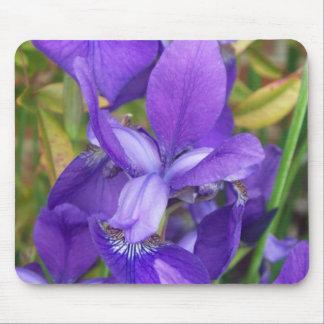 Flores púrpuras alfombrillas de ratones