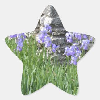 Flores púrpuras azul claro del iris por una pared calcomanías forma de estrella personalizadas