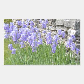 Flores púrpuras azul claro del iris por una pared rectangular altavoz