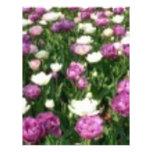 Flores púrpuras/blancas tarjetones